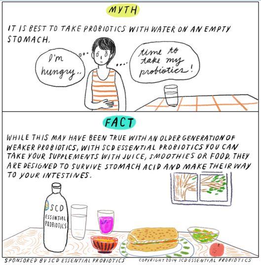 probiotic-myth-3