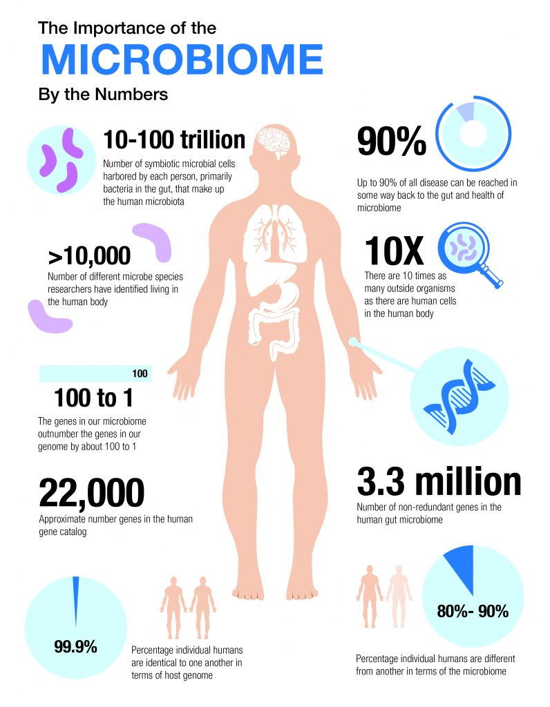 importance of microbiome